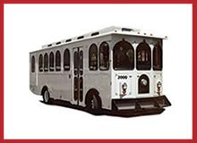Specialty Transit Buses